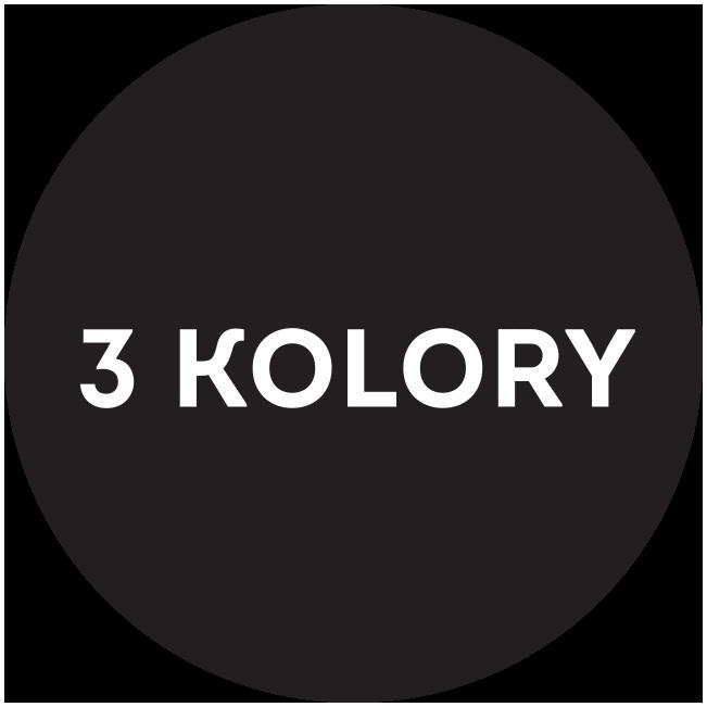 Logo 3 Kolory